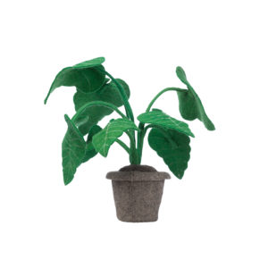 KIDSDEPOT VILTEN PLANT ALOCASSIA